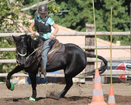 Championnat de Corse 2015 Equitation Western et Travail – Niolu à Cavallu