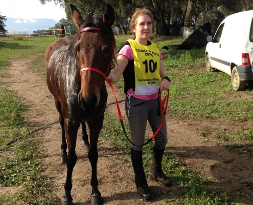 Le Cheval Corse en Endurance : Aleria 19 novembre 2017
