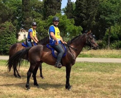 Cheval Corse en endurance à Poggio Mezzana le 29 mai 2016
