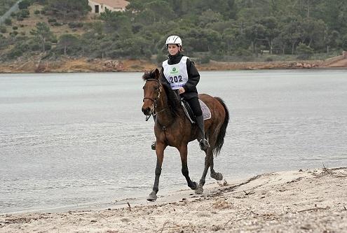 3 chevaux corses en endurance – Frombu, Cumpagnu et Muresca