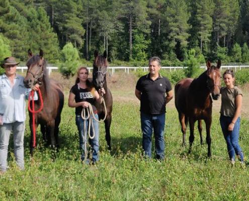 Endurance à Viseo -Zonza le 13 sept 2020